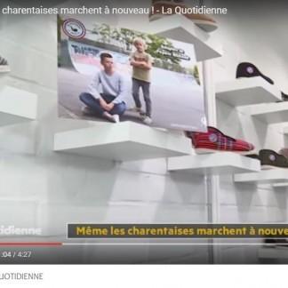 France 5, La Quotidienne